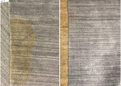 Viscose rug pet urine stain removal
