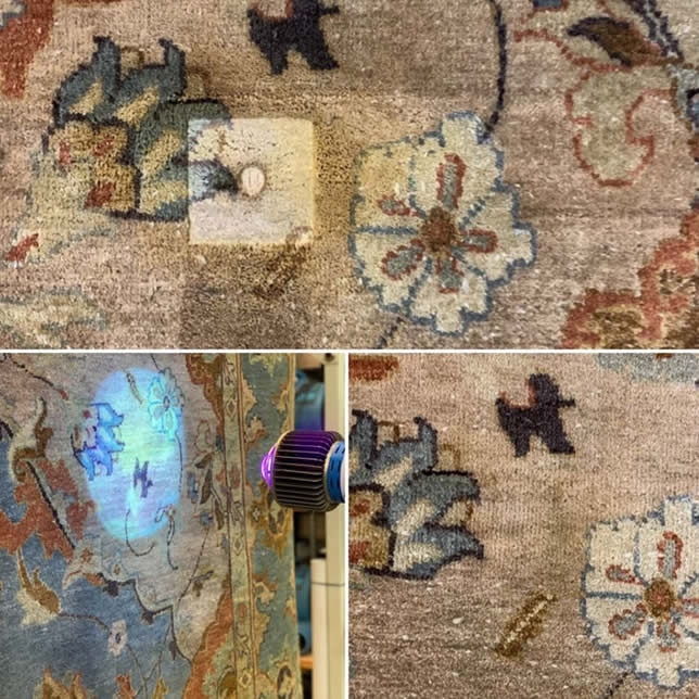 See our work - Kansas City Rug Cleaning