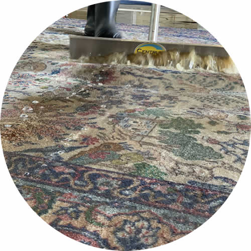squeegeeing a rug